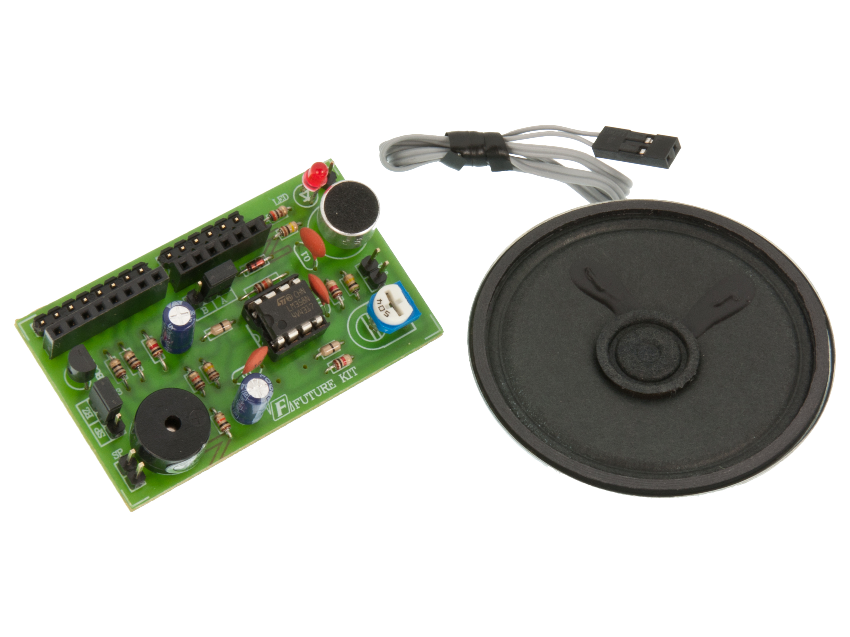 Voice and speaker shield