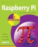 Raspberry Pi IES
